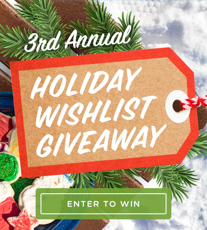 3rd Annual Holiday Wish List Giveaway - Enter Now!